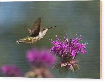 Hummingbird Moving Along Wood Print by Christina Rollo