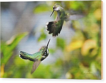 Hummingbirds Ensuing Battle Wood Print by Christina Rollo