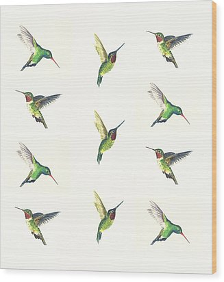 Hummingbirds Number 2 Wood Print by Michael Vigliotti