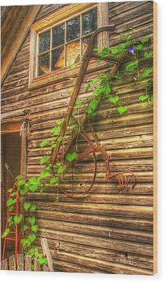 Hung To Rest Wood Print by Randy Pollard
