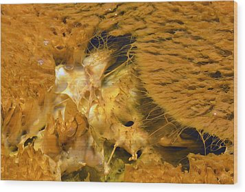 Hungry Looking Bacterial Mat Yellowstone Wood Print by Bruce Gourley