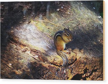 Hungry Wood Print by Mark Papke