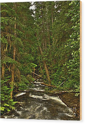 Hunt Creek Idaho Wood Print