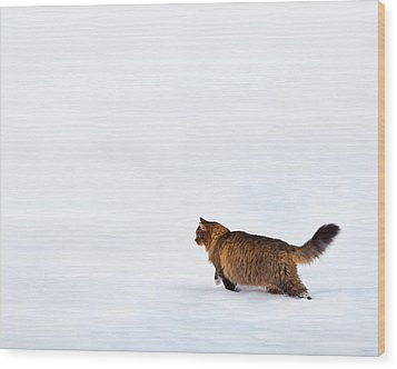 Hunter At Work Wood Print by Theresa Tahara