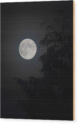 Hunters Moon Wood Print by Randy Hall