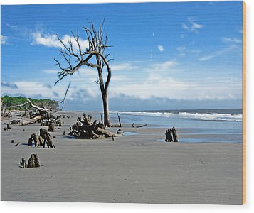 Wood Print featuring the photograph Hunting Island - 1 by Ellen Tully