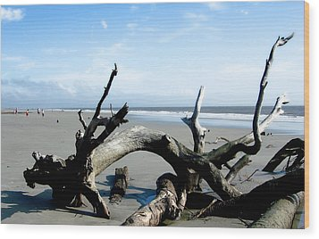 Wood Print featuring the photograph Hunting Island - 2 by Ellen Tully