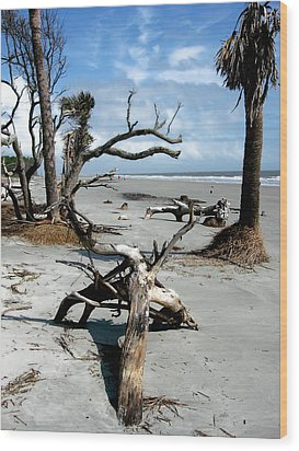 Wood Print featuring the photograph Hunting Island - 3 by Ellen Tully