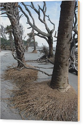 Wood Print featuring the photograph Hunting Island - 4 by Ellen Tully