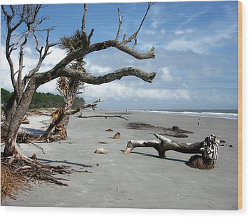 Wood Print featuring the photograph Hunting Island - 7 by Ellen Tully