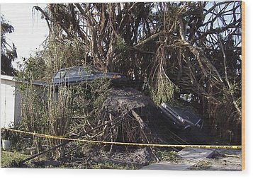 Hurricane Wilma Revenge In Pompano Beach  Wood Print