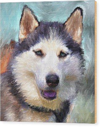 Huskies Wood Print by Yury Malkov