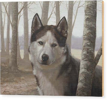 Husky In The Woods Wood Print by John Silver