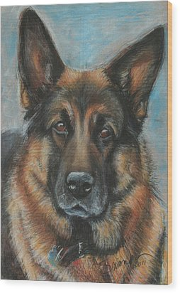 Hussler-german Shepherd Dog Wood Print