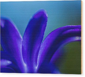 Hyacinth Detail Wood Print by Arkady Kunysz