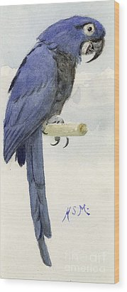 Hyacinth Macaw Wood Print by Henry Stacey Marks