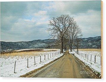 Hyatt Lane In Snow Wood Print by Debbie Green