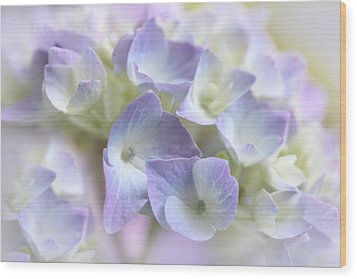 Hydrangea Floral Macro Wood Print by Jennie Marie Schell