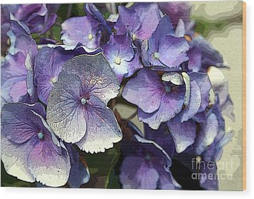 Hydrangea Wood Print by Rosemary Aubut