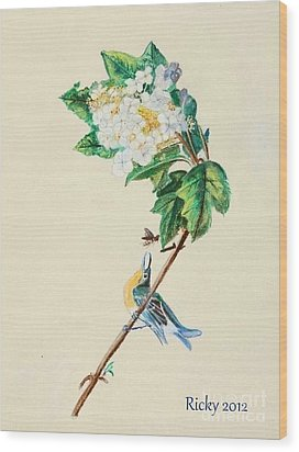 Hydrangea With Yellow Breasted  Vireo After Audubon Wood Print by Veronica Rickard
