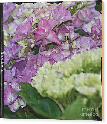 Wood Print featuring the photograph Hydrangeas by Leslie Hunziker