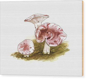 Hygrophorus Russula Mushrooms, Artwork Wood Print by Science Photo Library