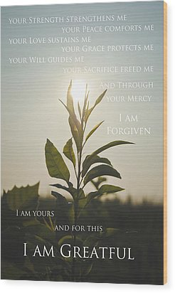 I Am Greatful Wood Print by Swift Family