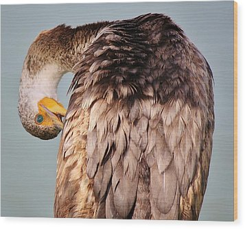 I Can See You Wood Print by Paulette Thomas