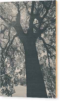 I Can't Describe Wood Print by Laurie Search