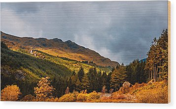 I Cant Forget This Light. Scotland Wood Print by Jenny Rainbow