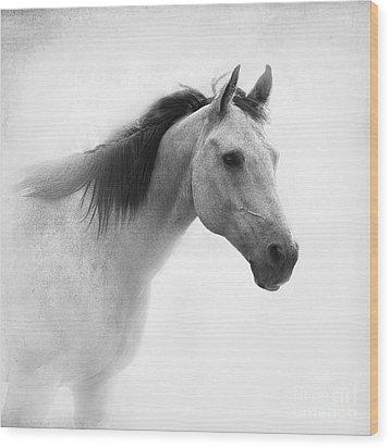 I Dream Of Horses Wood Print by Betty LaRue