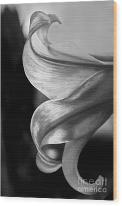 Wood Print featuring the photograph I Dreamt Of Lily by Sandi Mikuse