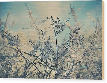 I Hope Spring Will Be Kind Wood Print by Laurie Search