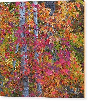 I Love Fall Wood Print by Scott Cameron