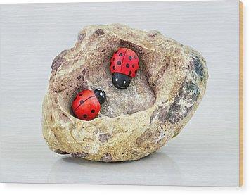I Love You - Says Ladybugs Wood Print by Gynt