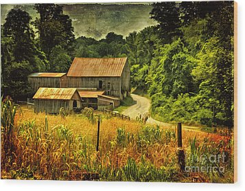 I Remember It Was In The Summer Wood Print by Lois Bryan