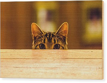 I See You Wood Print by Mike Ste Marie
