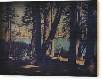 I Sit In The Shadows Wood Print by Laurie Search