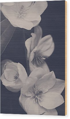 I Was Always Your Flower Wood Print by Laurie Search