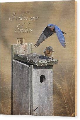 I Will Be Your Shelter Wood Print by Lori Deiter