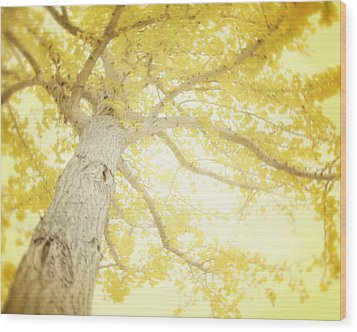 I Will Remember You Wood Print by Amy Tyler