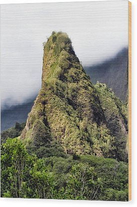 Iao Valley 47 Wood Print