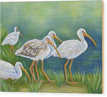 Ibis Flock With Juvenile Wood Print by Jeanne Kay Juhos