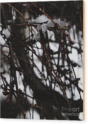 Ice 2 Wood Print by Linda Shafer