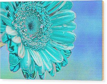 Ice Blue Wood Print by Carol Lynch