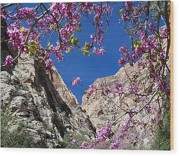 Wood Print featuring the photograph Ice Box Canyon In April by Alan Socolik