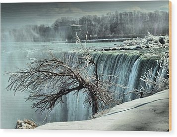 Ice Covered Tree Wood Print by Douglas Pike