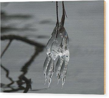 Ice Dance Wood Print by Lara Ellis