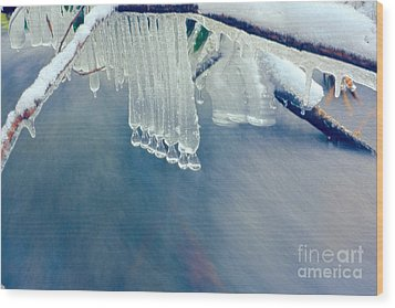 Ice Drops Over Stream Wood Print by Dan Friend