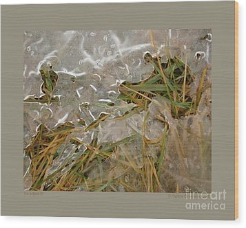 Ice Edges-iii Wood Print by Patricia Overmoyer